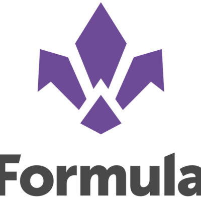 Revisione Forcelle Formula