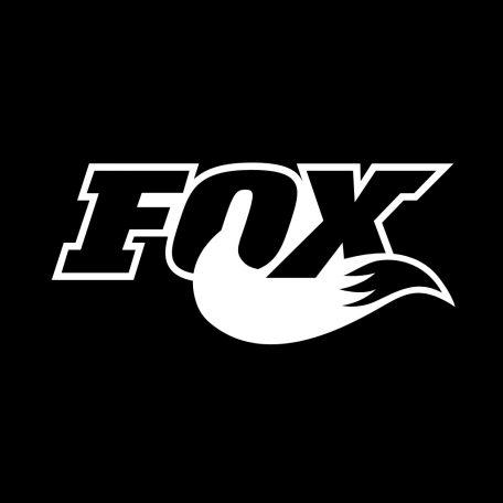 revisione ordinaria forcelle mtb fox