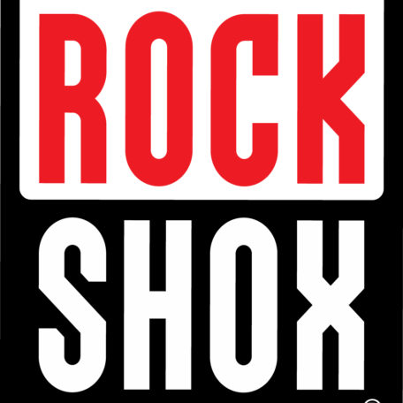 revisione ordinaria forcelle Rockshox